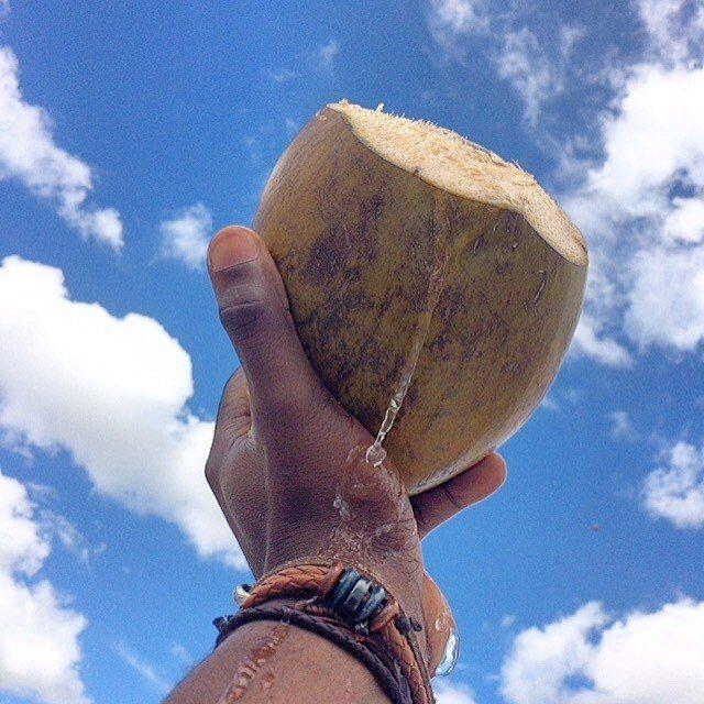 "L'eau de coco ""Dlo kokoye"" très bon pour la santé 27"