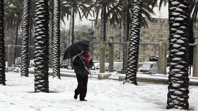 États-Unis : Du jamais-vu depuis 29 ans, il neige en Floride 28
