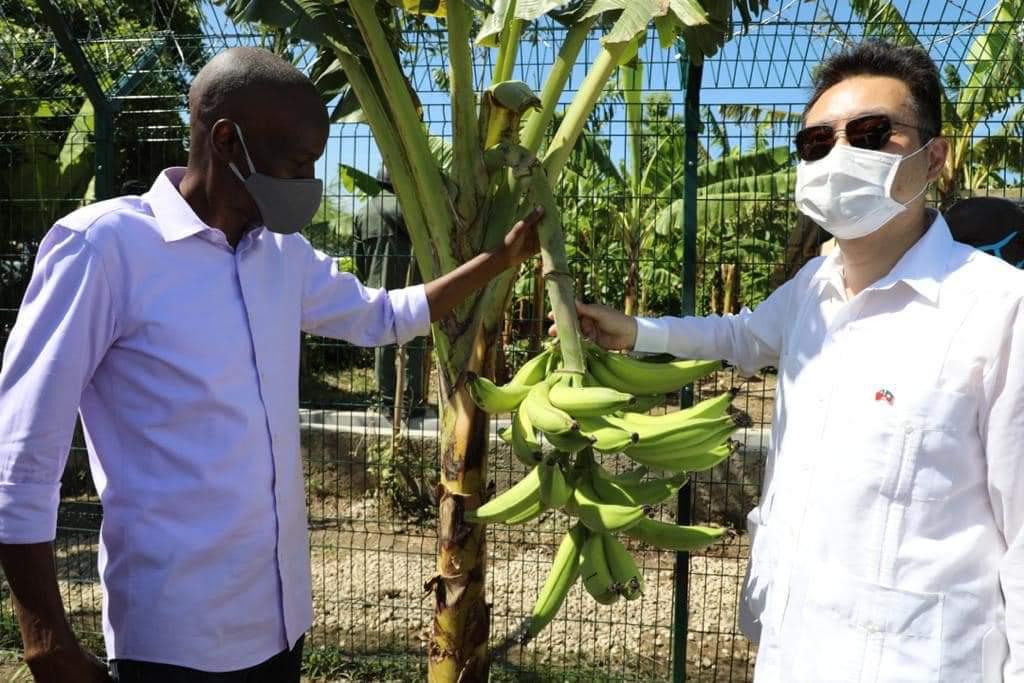 Jovenel Moïse à Cité Soleil pour supporter un projet d'irrigation à énergie solaire