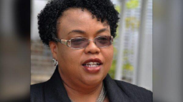 Covid-19- Haïti: 29 nouveaux cas et zéro mort, le bilan s'élève à 7 810 cas positifs