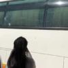 Au moins 4 blessés dont 2 graves lors d'une attaque armée contre un autobus sur la nationale #8