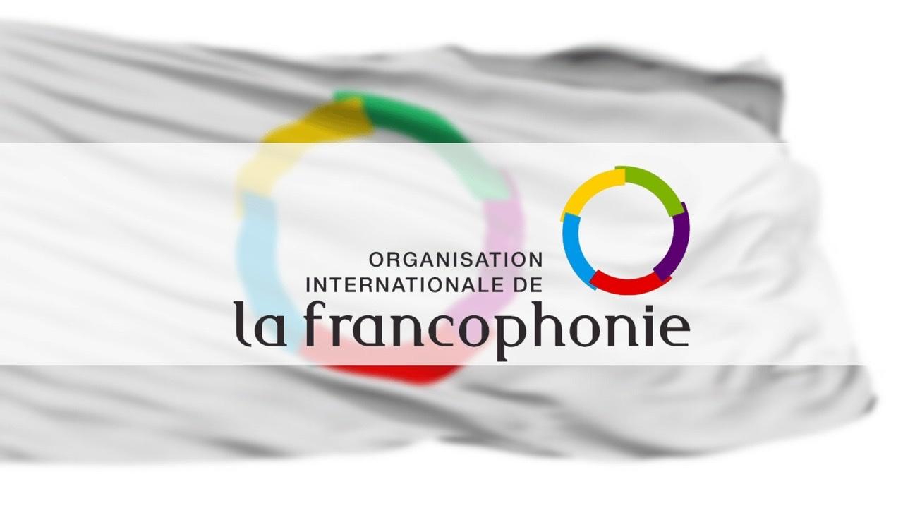 OIF: un troisième comité ad hoc sur la crise en Haïti
