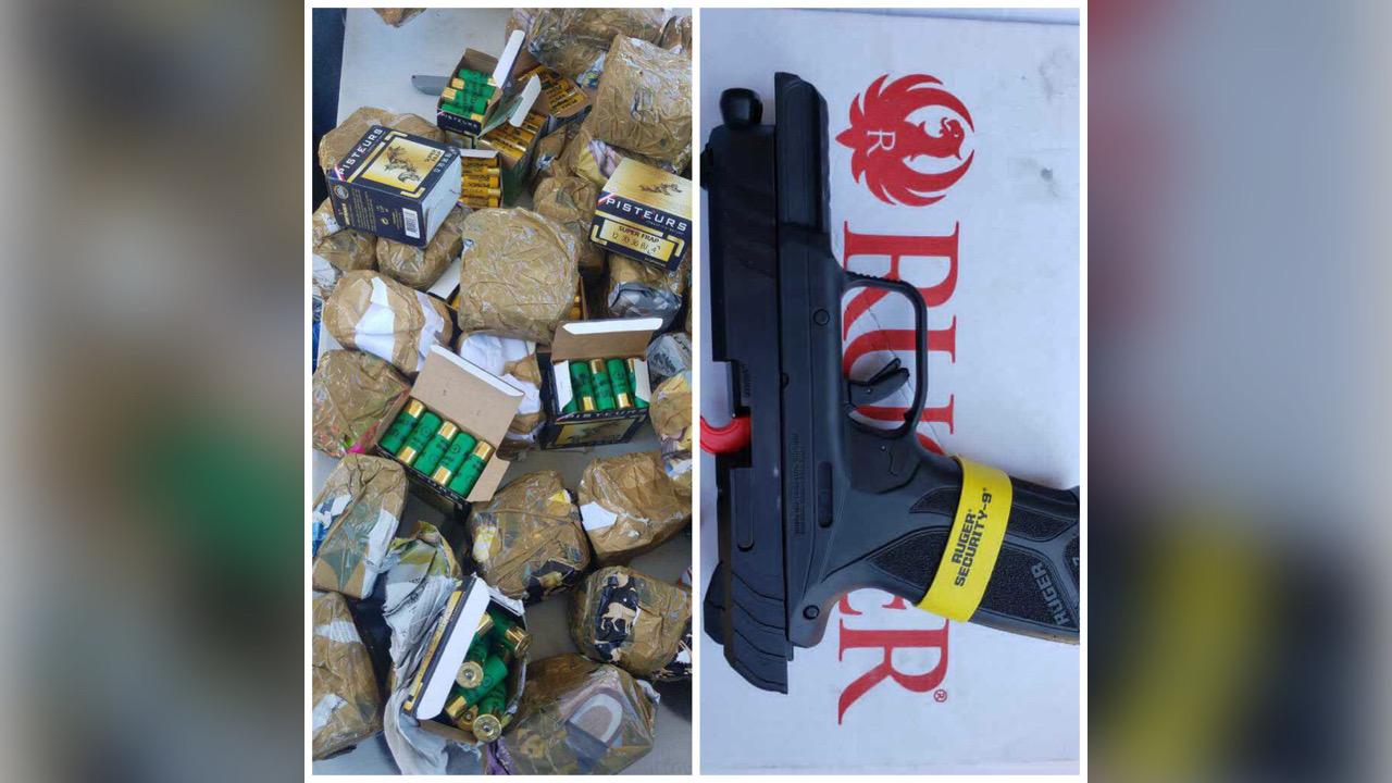 1 656 cartouches et une arme saisies, deux personnes arrêtées par la douane