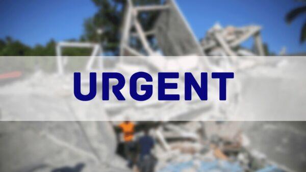 24 personnes retrouvées vivantes une semaine après le séisme
